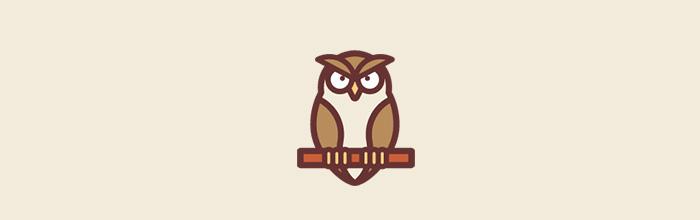 猫头鹰棕榈鬼鸮:听上去挺吓人 但是看上去挺蠢萌